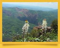 Угам-Чаткальский Национальный Парк